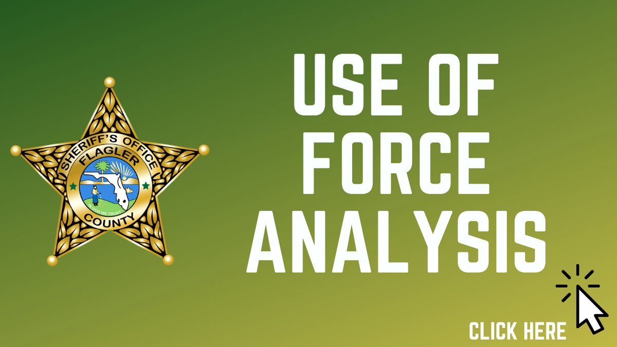 Use of Force Analysis